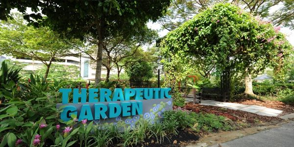 Qué es un jardín terapéutico
